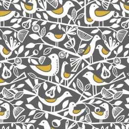 Doves Grey